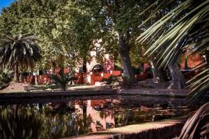 Etang du parc du Mas Sauvy