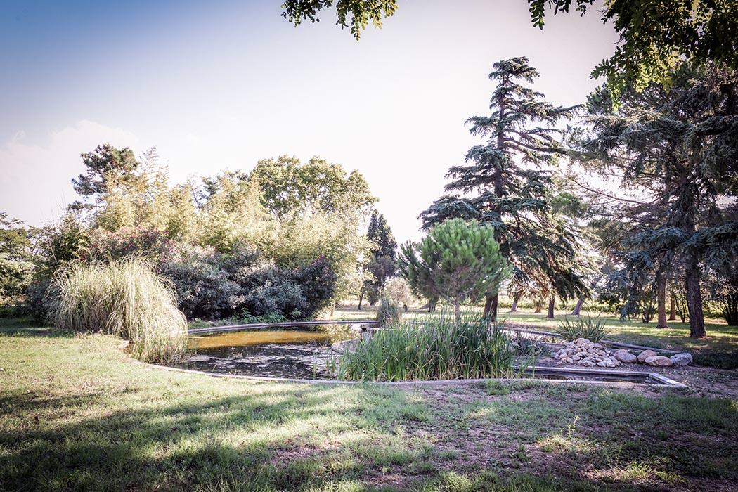 Jardin du Mas Sauvy